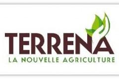Logo-Terrena
